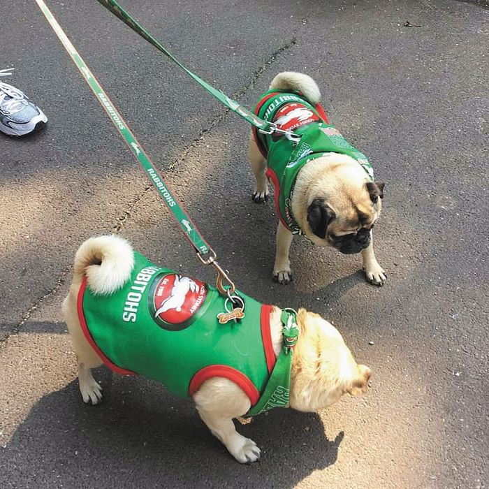 Zali and Ned Ross, two of Souths' biggest fans. Photo: Frances Kennedy